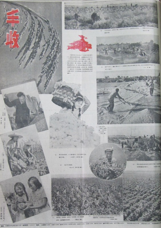 Bumper harvest propaganda 1960 in Tianjin Ribao