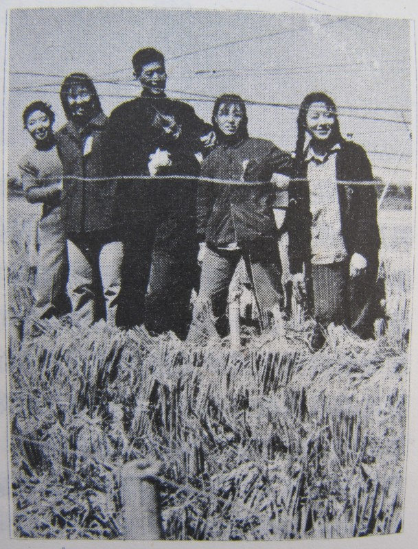 Standing on Grain Propaganda 1959